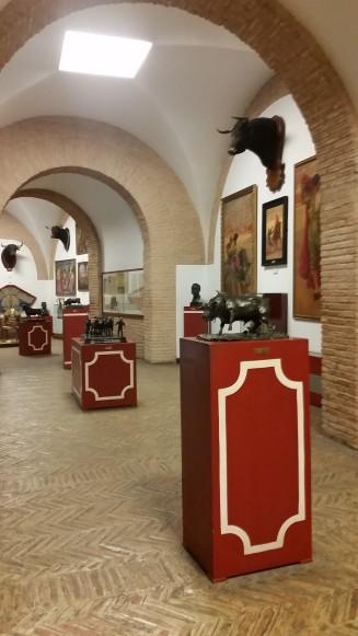 musée_arene